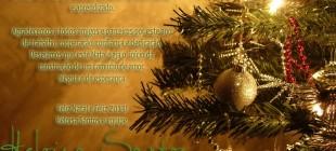 Feliz Natal e Feliz 2013!…
